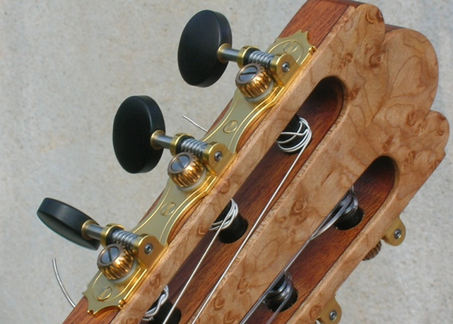 ag9-Guitar-Luthier-LuthierDB-Image-8